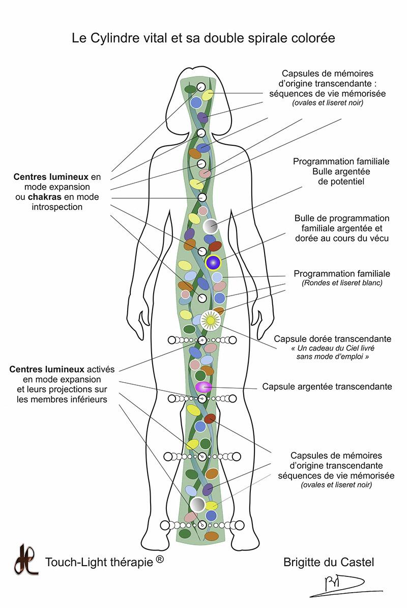 L'Aura et son Cylindre vital : votre âme en quelque sorte